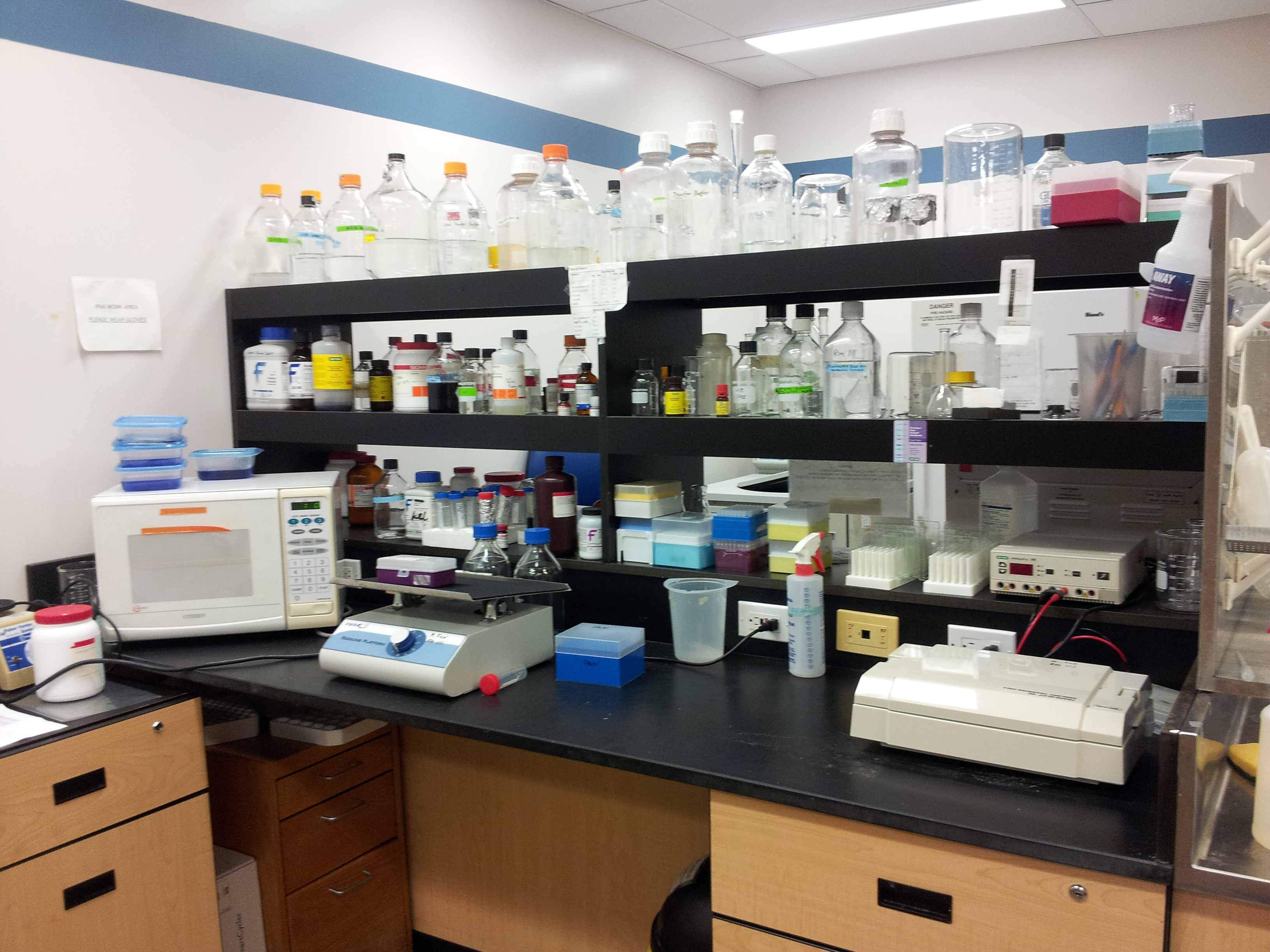 GML Wet Lab Bench