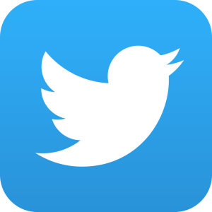 Twitter Icon - Follow Us