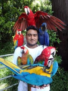 maraja's picture